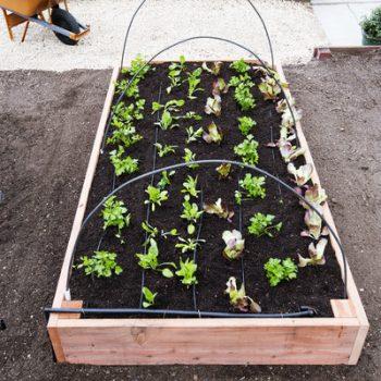15 DIY Raised Garden Beds