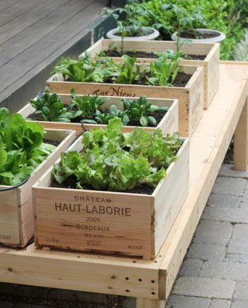 15 DIY Raised Garden Beds