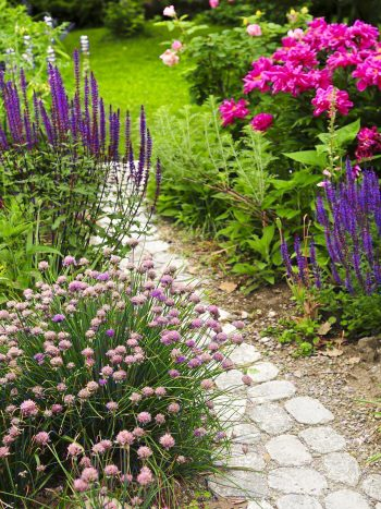 10 Garden Path Ideas for Your Yard
