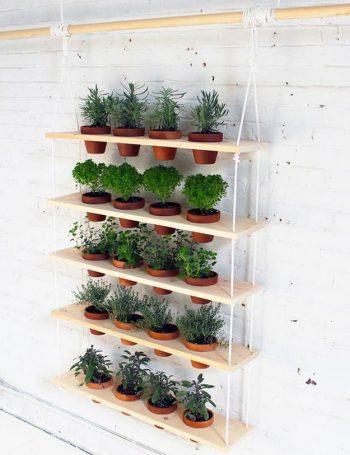 Trendy Ways to Display Your Indoor Herb Garden